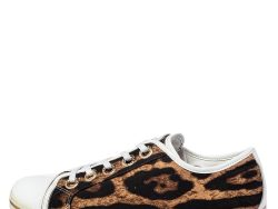 Dolce & Gabbana Brown/White Leopard Print Canvas and Leather Lace Low Top Sneakers Size 38