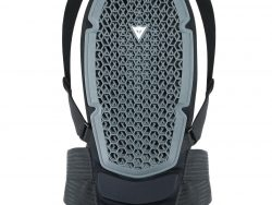 Dainese Pro Armor Back Protector G1 - Black