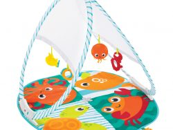 Fisher Price Draagbare Gym + 4 Speeltjes
